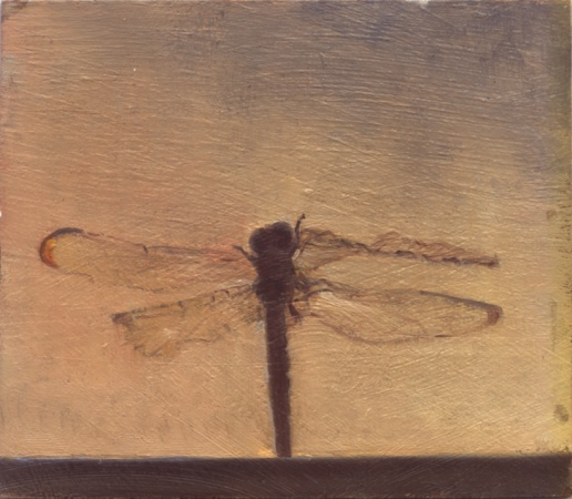DRAGONFLY ON A SILL